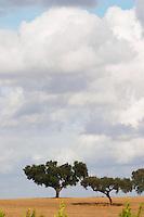 Herdade da Malhadinha Nova, Alentejo, Portugal