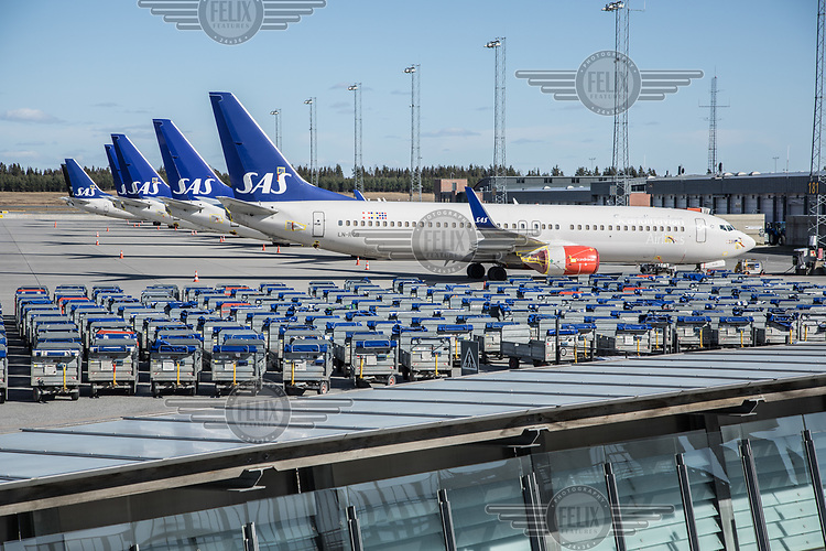 Grounded aircraft from SAS lined up with luggage carts at the tarmac.  <br />  <br /> Norwegian authorites introduced measures to combat the Coronavirus (COVID-19)  leaving Gardermoen Airport, near the Norwegian capital Oslo, deserted. <br /> <br /> Restriction on public gatherings and travel have grounded most airplanes, and stopped nearly all domestic and foreign travel. <br /> <br />  Like most capitals, Oslo is usually busy on a Saturday night. But on the first weekend after Norwegian authorites introduced measures to combat the Coronavirus (COVID-19) the city was almost deserted. <br /> <br /> Restriction on public gatherings, closure of schhols, new rules for those serving food and drinks, and fear of further spread of the virus compelled most bars and restaurants to close. <br /> <br /> 28,5 million passangers used the airport in 2018, with the airline Norwegian flying the most people. At teh time of writing Norweigan is on the verge of bankruptcy, and hoping to get governemnt aid to surive the economic crisis caused by the corona virus.  <br /> <br /> <br /> ©Fredrik Naumann/Felix Features