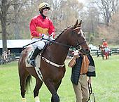 3rd Middleburg Hunt Cup  -  Cornhusker
