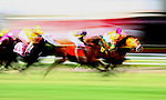 Thoroughbred Racing- Famous Horse, People & Racing Action