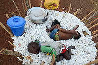 BURKINA FASO, village Soumousso, cotton harvest, transport of harvested cotton with donkey cart from field to village, two exhausted children sleep in cotton fibre / Baumwolle Ernte, Transport von Baumwolle mit Eselkarren vom Feld zum Dorf, zwei erschoepfte Kleinkinder schlafen in der Baumwolle