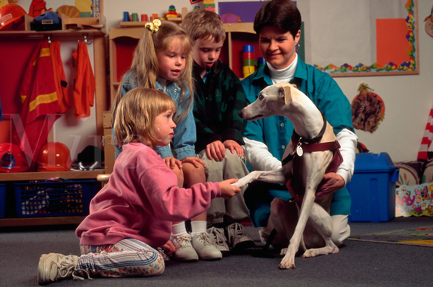A volunteer brings her whippet, an activity dog, to visit with school children.