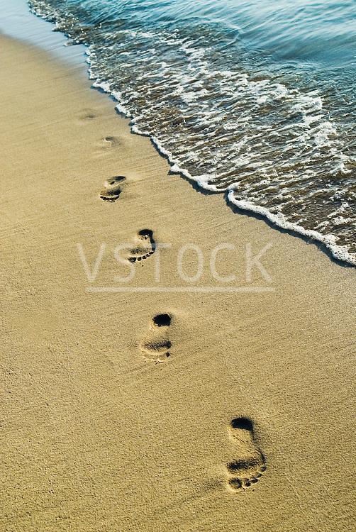 vertical footprints sand footprint foot print bare foot barefoot feet toe sole arch mark imprint imprinted impression memory memories beach seaside oceanside shore shoreline tourism tropic tropical stranded deserted sandy water saltwater