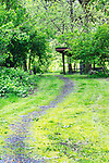 Trail to Hiker, Biker, camp at Champoeg State Park.  Green dominates the color pallet at Champoeg State Heritage Area (Champoeg State Park), in Oregon's Willamette Valley south of Portland, Oregon