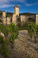 Europe/France/Midi-Pyrénées/46/Lot/Cahors:La vallée du Lot et le Pont Valentré et le Jardin d'ivresse qui fait partie des jardins secrets de Cahors