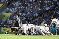 Danny Cipriani of Wasps looks on during the Premiership Rugby Final at Twickenham Stadium on Saturday 27th May 2017 (Photo by Rob Munro)
