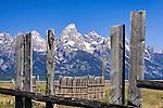 Remains of a historic Corral along Mormon Row frame the Teton Range.  Grand Teton National Park, United States, Wyoming.  Mormon Row is a line of historic homesteads along Jackson-Moran Road, Grand Teton National Park.