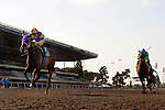Love Theway Youare with Garrett Gomez up wins the Vanity Handicap at Betfair Hollywood Park in Inglewood, California on June 16, 2012.