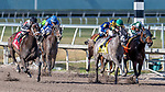 HALLANDALE BEACH, FL - MAR 17:Ivy Bell #1 trained by Todd A. Pletcher with Javier Castellano in the irons closes the gap on to winning the $200,000 Inside Information Stakes G2 at Gulfstream Park on March 17, 2018 in Hallandale Beach, Florida. (Photo by Bob Aaron/Eclipse Sportswire/Getty Images)