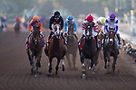 ARCADIA, CA - NOV 04: Beholder #8 and Songbird #1 are running at 1st turn in the Longines Breeders' Cup Distaff at Santa Anita Park on November 4, 2016 in Arcadia, California. (Photo by Kaz Ishida/Eclipse Sportswire/Breeders Cup)