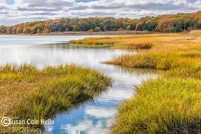 Autumn color at Nauset Marsh, Eastham, Cape Cod National Seashore, MA