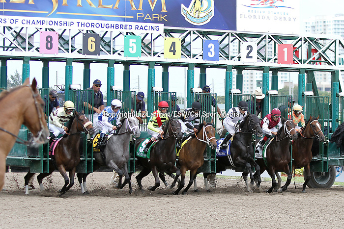 March 29, 2014: #6 In Tune (KY) with jockey Javier Castellano on board duel with House Rules (KY) and Alex Solis to win the Gulfstream Oaks G2 at Gulfstream Park in Hallandale Beach, FL. Liz Lamont/ESW/CSM