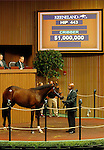 September 15, 2015: Hip 443 Fastnet Rock - Maryinsky (IRE) filly consigned by Hill 'n'Dale Sales.   Candice Chavez/ESW/CSM