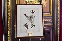Audubon New York 2017 Keesee Award Luncheon