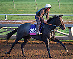October 27, 2014:  Sunset Glow, trained by Wesley Ward, exercises in preparation for the Breeders' Cup Juvenile Fillies Turf at Santa Anita Race Course in Arcadia, California on October 27, 2014. Scott Serio/ESW/CSM
