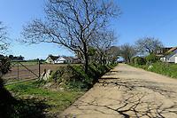Straße,  Insel Sark, Kanalinseln