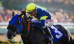 August 31 2014: Midnight Storm with Tyler Baze wins the Del Mar Derby at Del Mar Race Track in Del Mar CA. Alex Evers/ESW/CSM