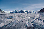 Alaska, Chugach Range. Matanuska Glacier, National Outdoor Leadership School instructor reads atop the medial moraine en route to the left icefall and climbing the local peaks,.
