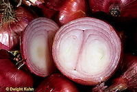 HS16-030a  Onion - red onion cut in half