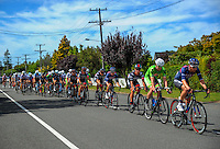 The peleton cycles up Upper Plain Rd during stage five of the NZ Cycle Classic UCI Oceania Tour in Masterton, New Zealand on Tuesday, 26 January 2017. Photo: Dave Lintott / lintottphoto.co.nz