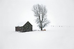 Coming in on a hush, a snowstorm sweeps across the high Colorado plains, dusting a long-forgotten outbuilding in the Elk River Valley near Steamboat Springs, Colorado.