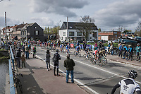 peloton with 1 local finish lap to go<br /> <br /> 105th Scheldeprijs 2017 (1.HC)<br /> 1 Day Race: Mol › Schoten (BEL/202km)