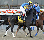 Matuszak (no. 6), ridden by Junior Alvarado and trained by William Mott, runs in the 100th running of the grade 2 Remsen Stakes for two year olds on November 30, 2013 at Aqueduct Race Track in Ozone Park, New York.  (Bob Mayberger/Eclipse Sportswire)