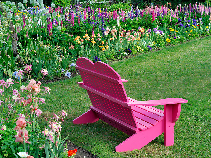 Chair at Schreiner's  iris Gardens. Brooks, Oregon