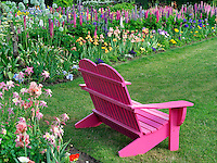 Chair at Schreiner's  iris Gardens. Brooks, Oregon