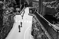 peloton<br /> <br /> 69th Critérium du Dauphiné 2017<br /> Stage 8: Albertville > Plateau de Solaison (115km)