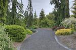 Trail through the Conifer Garden, Oregon Gardens, Silverton, Oregon. USA, an 80 acre botanical garden in the Willamette Valley.  Windy day.  HDR image.