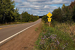 "Chequamegon National Forest road sign ""Elk Crossing"".  Fall.  Wisconsin."