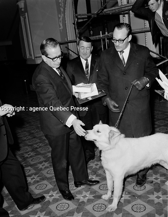 ARCHIVE <br /> <br /> Le Premier ministre et chef de l'union-Nationale<br /> Daniel Johnson<br /> , Entre le 3 et 9 avril 1967<br /> <br /> Photographe : Photo Moderne