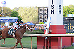 April 12, 2014: #1 Danza with jockey Joe Bravo aboard approaches the finish line of the Arkansas Derby (Grade I) at Oaklawn Park in Hot Springs, AR. Zoie Clift/ESW/CSM