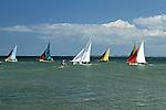 Sailboat Race