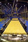 OSB manufacturing line