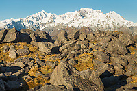 Afternoon light on rocks and alpine vegetation with views of Southern Alps with highest peaks Aoraki Mount Cook, Mount Tasman, Westland Tai Poutini National Park, UNESCO World Heritage Area, West Coast, New Zealand, NZ
