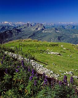 Austria, Styria, view from Reiteralm Panorama Trail towards Austrian Alps