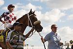 October 03, 2015:  Flora Dora with jockey Matthew Rispoli up wins the My Dear Girl Division of the Florida Sire Stakes at Gulfstream Park.  Gulfstream Park, Hallandale Beach (FL). Liz Lamont/ESW/CSM