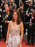 """FRA: """"THE BFG"""" Red Carpet- The 69th Annual Cannes Film Festival - Berenice Bejo. attend """"THE BFG"""". Red Carpet during The 69th Annual Cannes Film Festival on May 14, 2016 in Cannes, France."""