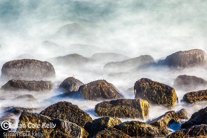 Waves splash seaweed-covered rocks in Rockport, MA, USA