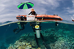 Tender to research vessel Cape Ferguson at the far northern Great Barrier Reef for a coral survey, split level. Charlie Veron brings coral samples to tender