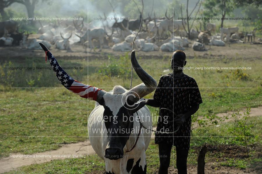 Afrika SUED-SUDAN  Bahr el Ghazal region , Lakes State, Dorf Yeri, Dinka mit Zeburindern im cattle camp bei Rumbek | <br /> Africa SOUTH SUDAN  Bahr al Ghazal region , Lakes State, village Yeri cattle camp near Rumbek, bull horn wrapped in US flag