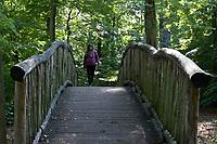 GERMANY, Hamburg, forest / Deutschland, Hamburg, Wald im Jenisch Park