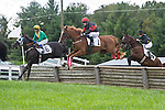 1 October 2011: Elusive Prince and Roddy Mackenzie (left) win the James P. McCormick timber race at Virginia Fall Races in Middleburg, Va. Monstaleur and Joey Elliot (middle) were second. Elusive Prince is owned by Irvin Naylor and trained by Katherine McKenna. Susan M. Carter/Eclipse Sportswire
