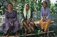 INDONESIA Java Forstenlanden, women sitting infront of tobacco field / Indonesien Java Forstenlanden, drei Frauen vor Tabakplantage