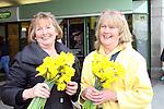 Daffodil Day 2010