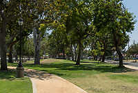 The decomposed granite running path curves off left past a light post towards picnic tables.  South Gate Park's massive mature trees dominate the image.  A man walks across the grass and a few other people are visible in the image.