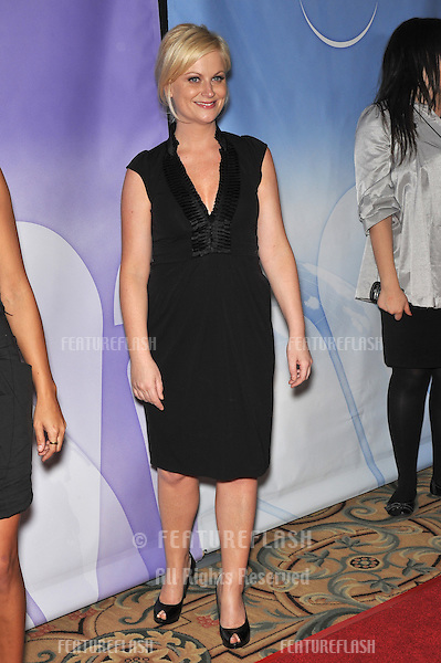 """""""Parks and Recreation"""" star Amy Poehler at NBC Universal's Winter 2010 Press Tour cocktail party at the Langham Huntington Hotel, Pasadena..January 10, 2010  Pasadena, CA.Picture: Paul Smith / Featureflash"""