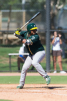 Oakland Athletics catcher Santis Sanchez (44) at bat during an Instructional League game against the Los Angeles Dodgers at Camelback Ranch on September 27, 2018 in Glendale, Arizona. (Zachary Lucy/Four Seam Images)